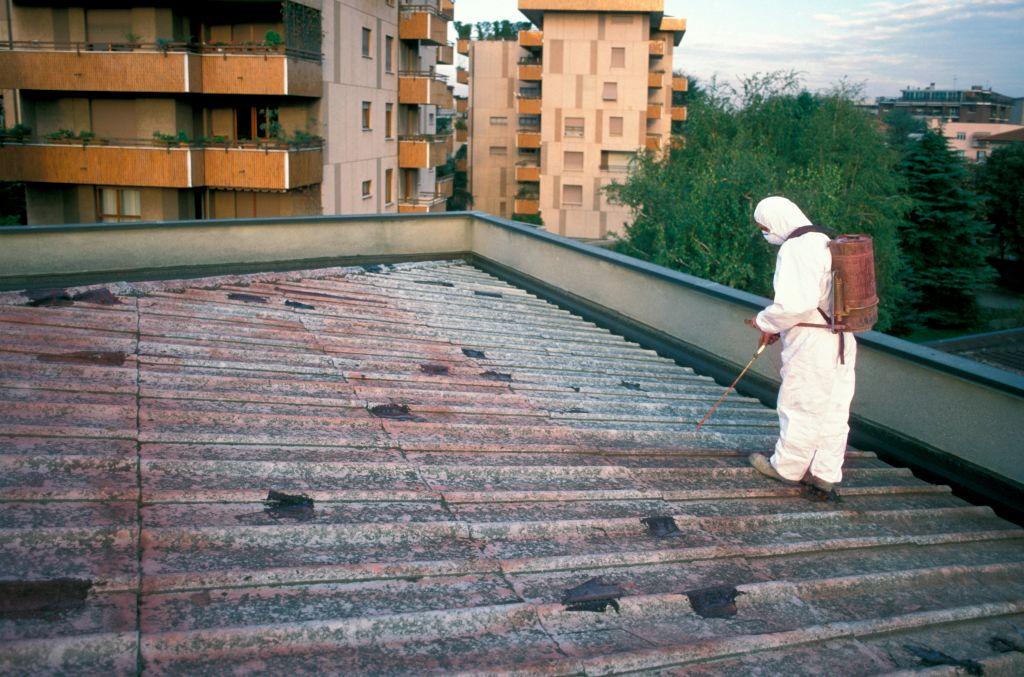 mężczyźni na dachu
